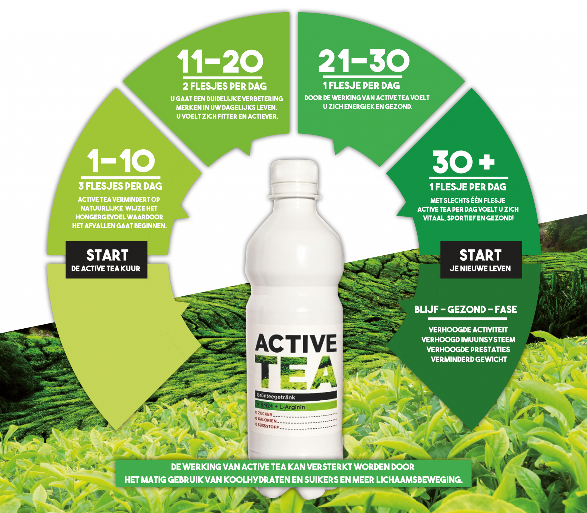 Active Tea Cycle